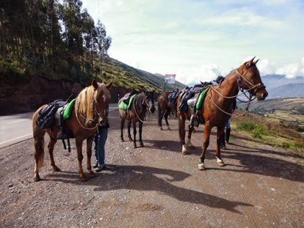 Horseback Riding Sacred Valley