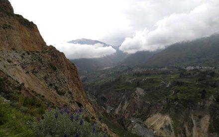 Colca Canyon Trek